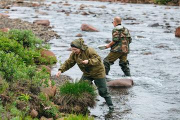 Ученые исследуют восстановление экосистемы на реках и ручьях Таймыра