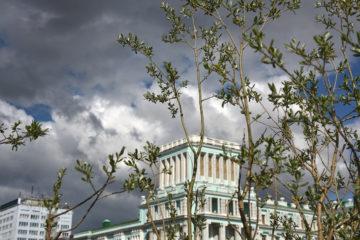 В пандемию российский бизнес стал больше тратить на экологию