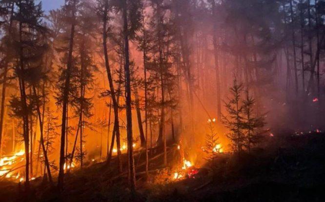 Красноярский край готов помочь Якутии в борьбе с пожарами