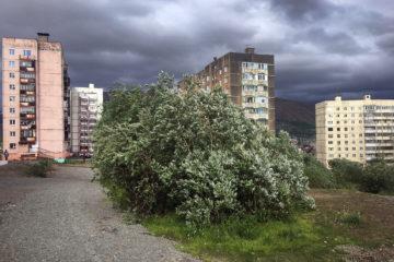 В Норильске продолжает бушевать ветер