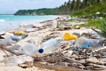 В России через три года прекратят производить одноразовый пластик