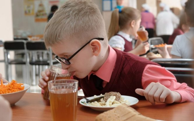 В Госдуме напомнили о стандартах бесплатной школьной еды