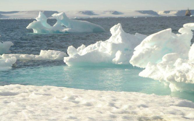 В Арктике этим летом замедлилось таяние льдов