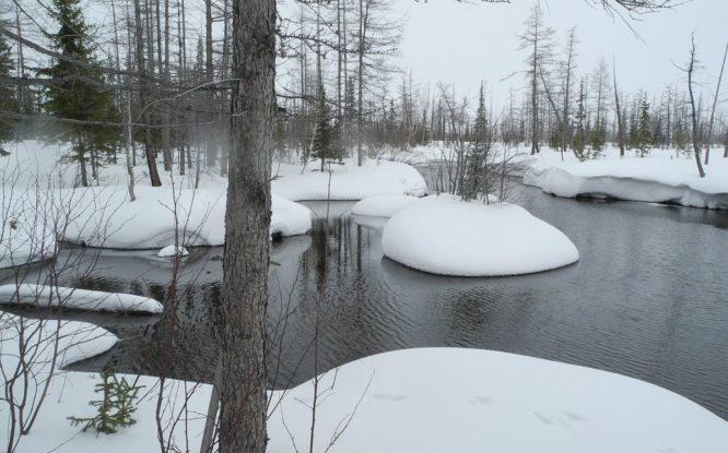 К 2050 году ущерб от потепления в Арктике может достичь семи триллионов рублей