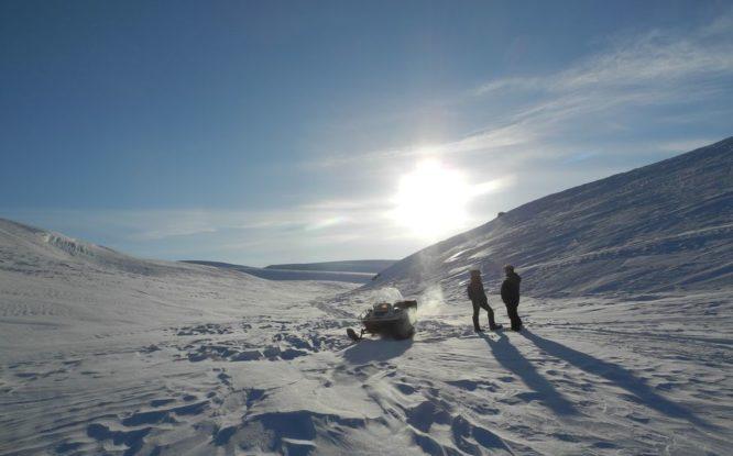 Молодые ученые Красноярского края получат деньги на исследование Арктики